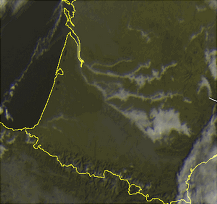 brouillard-sud-ouest.png