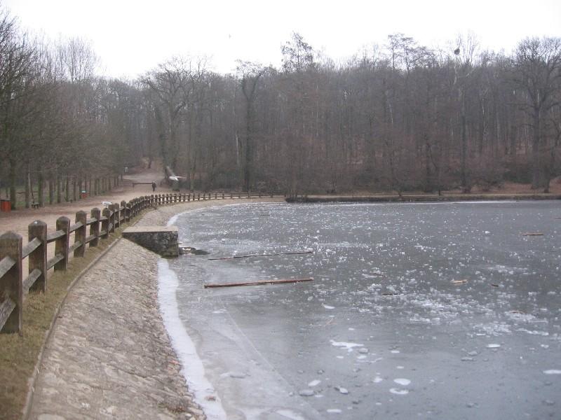 Lac du bois de st cucufa sur les hauteurs de rueil - Meteo rueil malmaison ...
