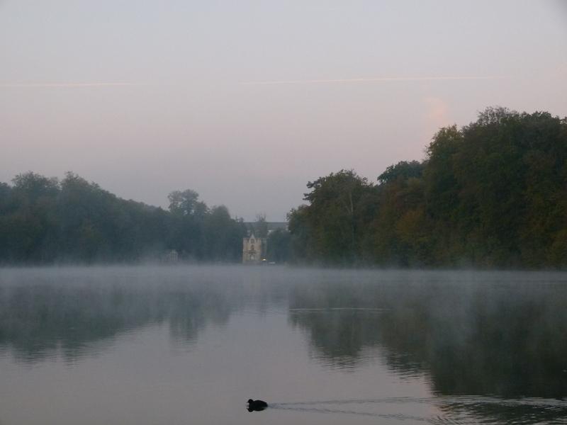 Brouillard d 39 vaporation photolive toutes les photos - Meteo coye la foret ...