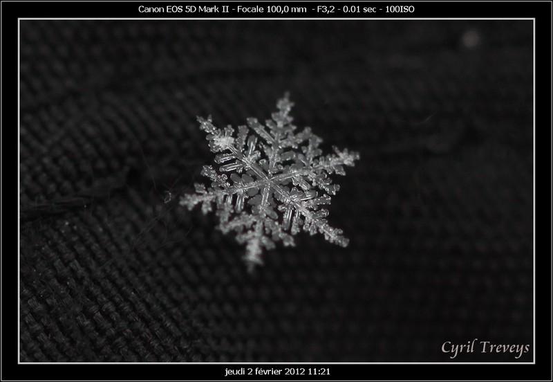 Flocon de neige photolive toutes les photos m t o en temps r el infoclimat - Vrai flocon de neige ...