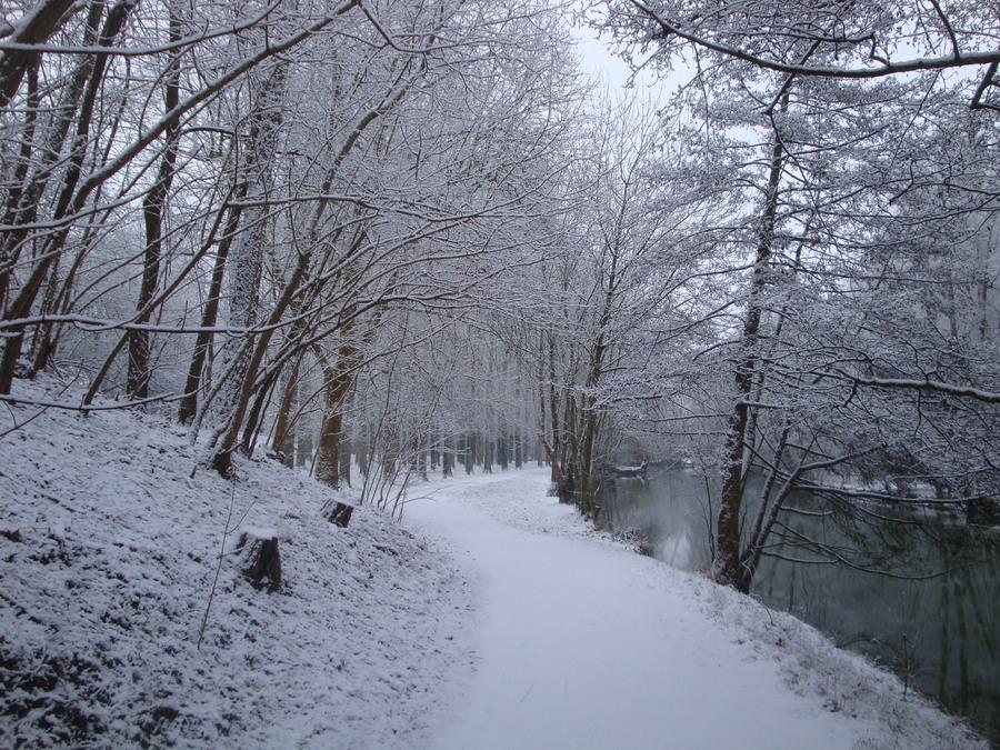 L'hiver sans fin